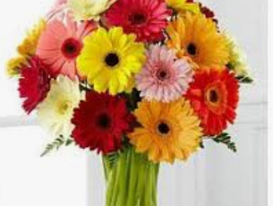 Bouquet colorato di gerbere